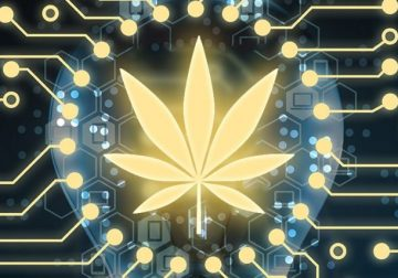 Does Blockchain Hold the Key to Solve Some Key Issues of Cannabis Industry?